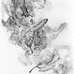 Thumbnail of Fractal Butterflies