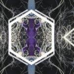 Thumbnail of Interstitial Video Still