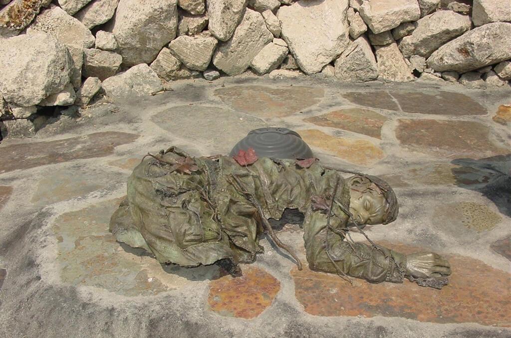 Vietnam Cadaver